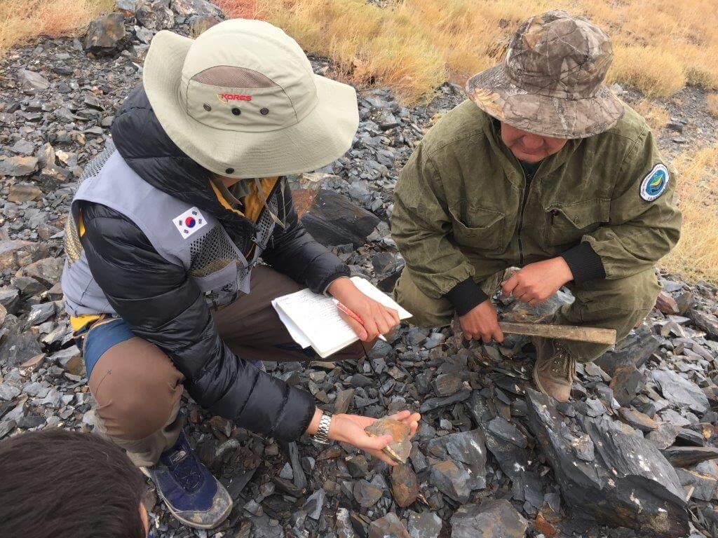 Виды геологоразведочных работ